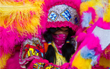 Pink and Yellow Mardi Gras Indian