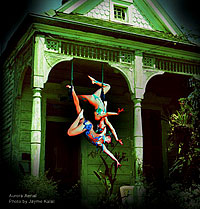 """photo of """"The Lunatic King"""" by Aurora Aerial by Jayme Kalal"""