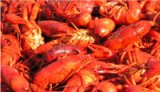 Crawfish at Jazz Fest