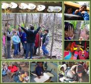 Since 1995, Teaching Responsible Earth Education (T.R.E.E.) has provided curricu