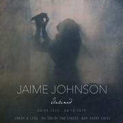 Jaime Johnson : UNTAMED opening 04.03.15 6:00 - 8:00pm at Smith & Lens in BSL.