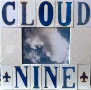 Cloud Nine; mixed media
