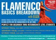 Flamenco Basics Breakdown with Eliza