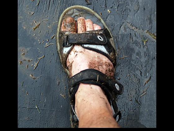 2008: Don't wear your best sandals